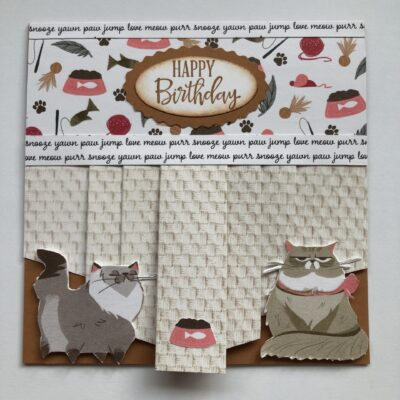 Cute little Birthday card with pleated Patterned paper.
