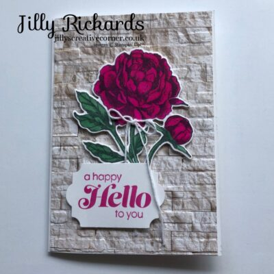 Peony Flowers and a happy HELLO!